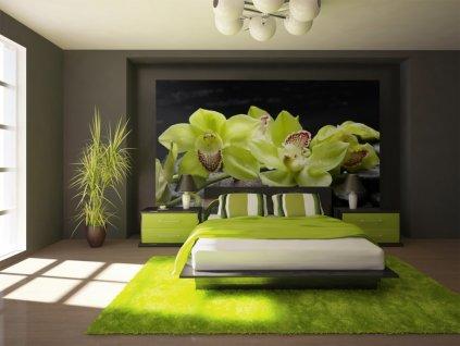 Zelená orchidej (Rozměry (š x v) a Typ 147x105 cm - samolepící)