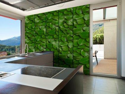 Zelené brány (Klasické tapety 49x1000 cm - samolepicí)