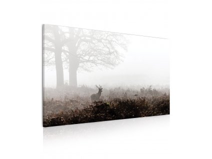Obraz Jelen v mlze