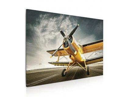 Obraz Žluté letadlo