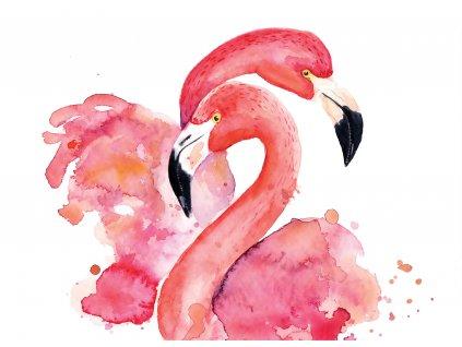 Tapeta Akvarel plameňáci