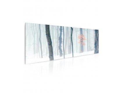 Obraz zimní les v mlze
