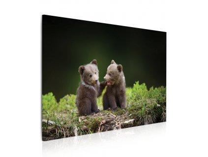 Obraz medvíďata v lese