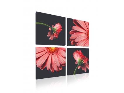 Čtyřdílný obraz Červené květy
