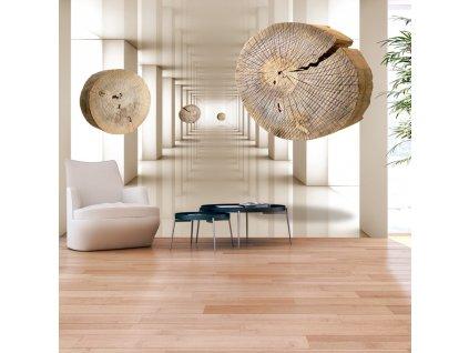 Fototapeta - Létající kruhy dřeva (Rozměry (š x v) a Typ 147x105 cm - samolepící)