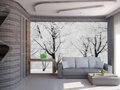 Fototapeta - sníh na stromech (Rozměry (š x v) a Typ 147x116 cm - samolepící)