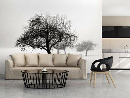 Fototapeta - stromy v zimě (Rozměry (š x v) a Typ 147x116 cm - samolepící)