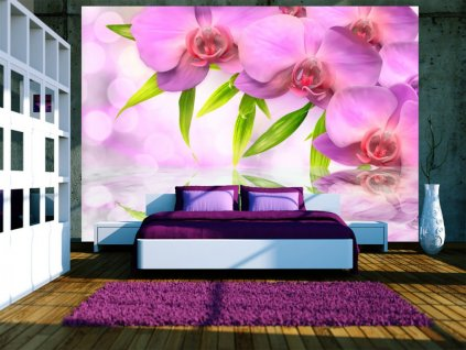 Fototapeta fialová orchidea (Rozměry (š x v) a Typ 147x105 cm - samolepící)