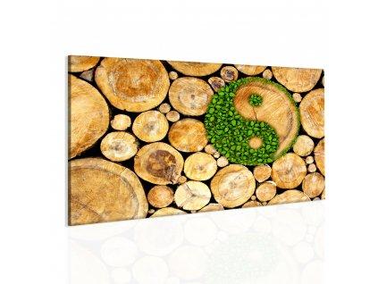 Obraz zelená rovnováha (Velikost 90x60 cm)