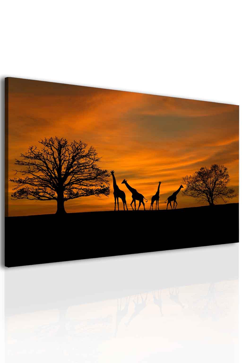 Obraz západ slunce na safari Velikost: 60x40 cm