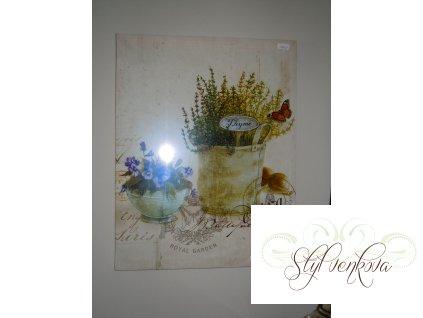 Obraz macešky, bylinky