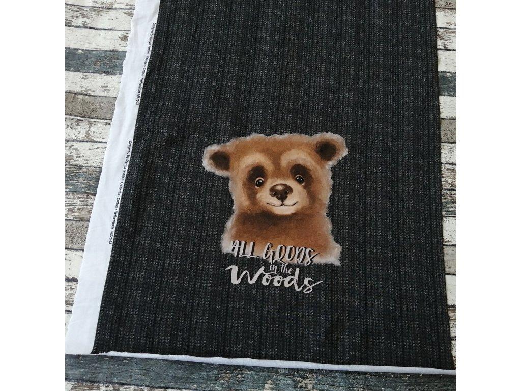 Panel - medvěd na antracitovém svetříku