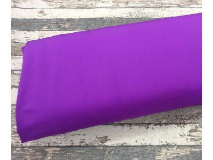 Plavkovina, fialová 045