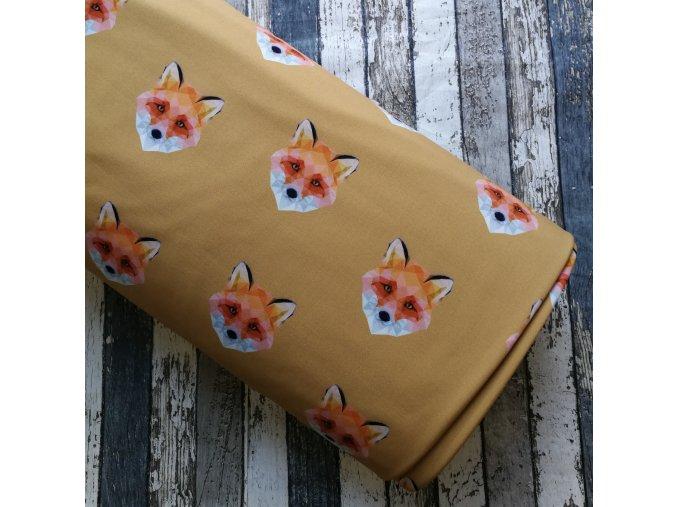 Softshell zimní, liška na hořčici