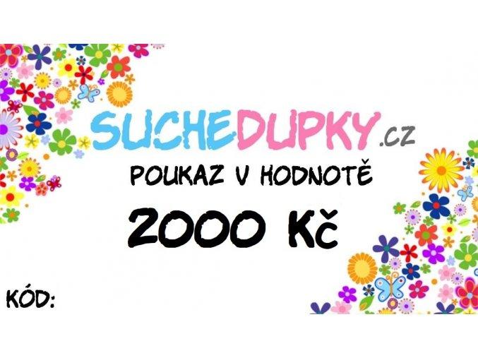 vzor 2000