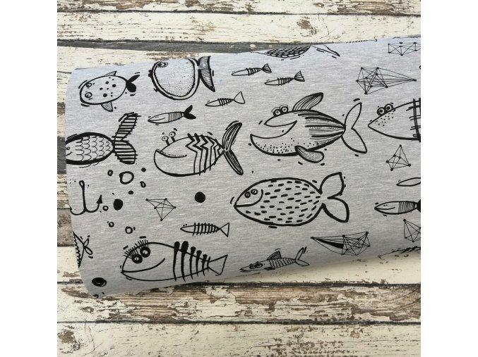 Teplákovina, ryby na šedém melíru