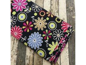 Kočárkovina, barevné květy na černé