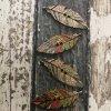 Knoflík dřevěný, peříčka
