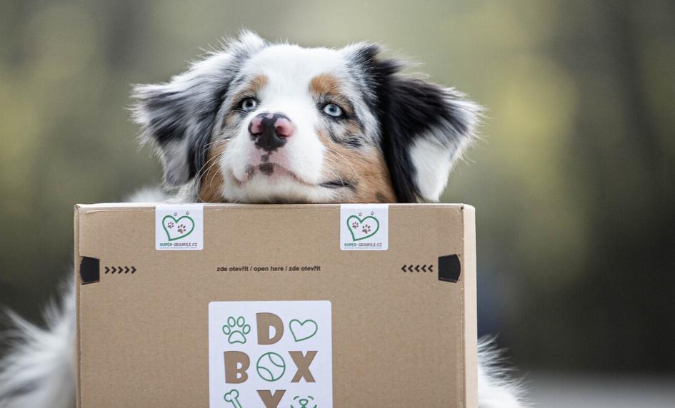Vyhrajte DOX-BOX spamlsky nacelý rok zdarma! - UKONČENO