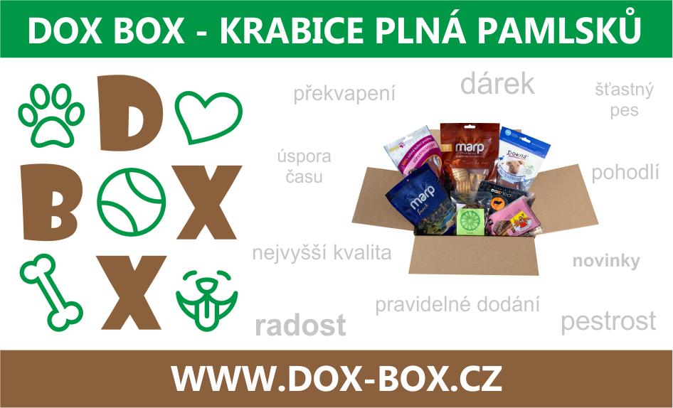 www.dox-box.cz