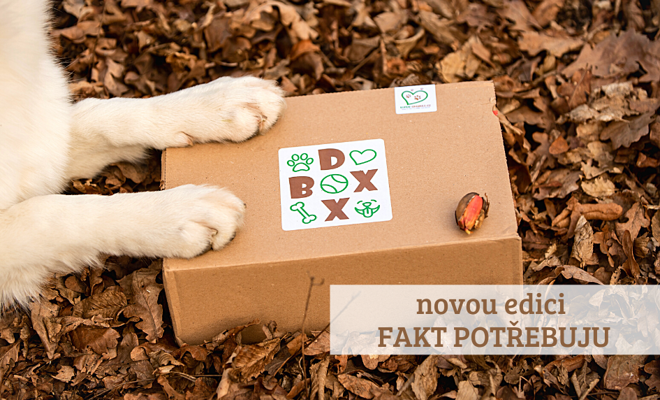 Podzimní DOX-BOX nová edice