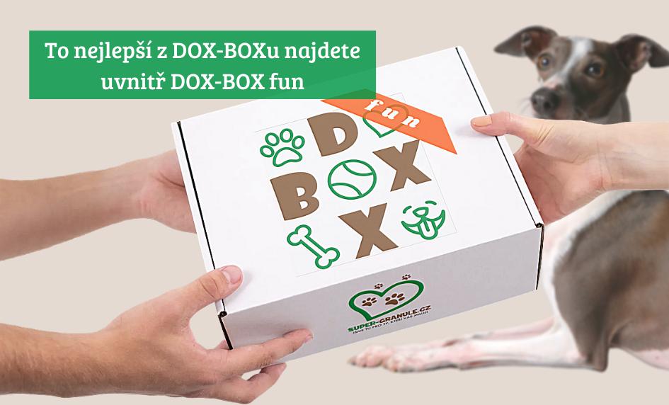 DOX-BOX FUN potěší každého mazlíčka