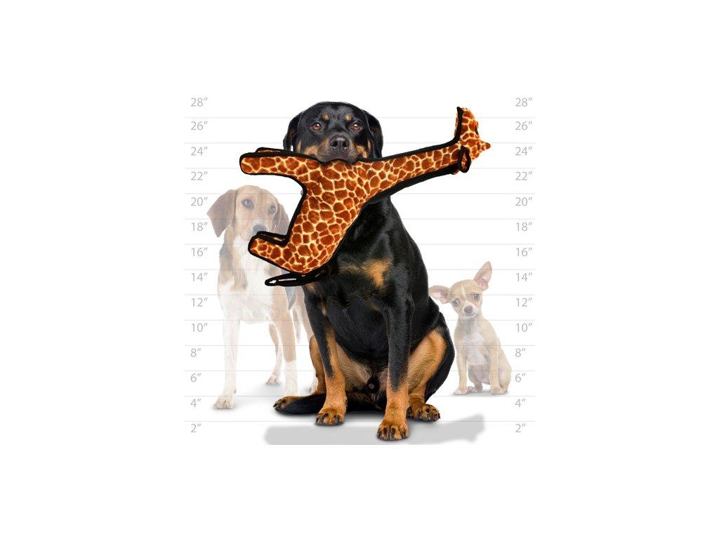 1554291572T Z Giraffe dog