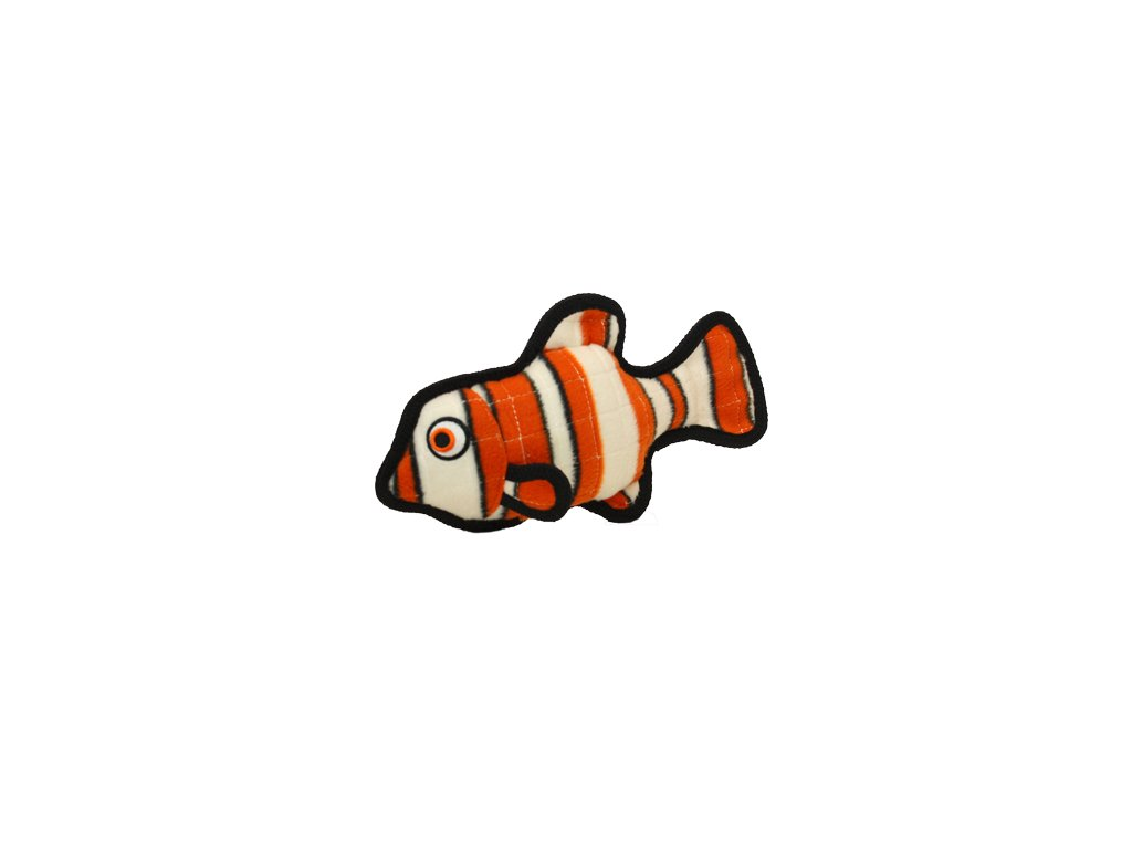 t oc fish or 0031