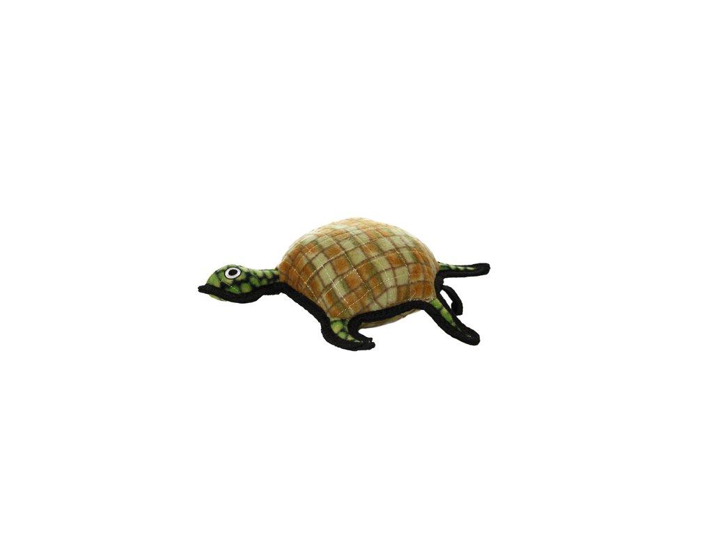 t oc turtle 0007