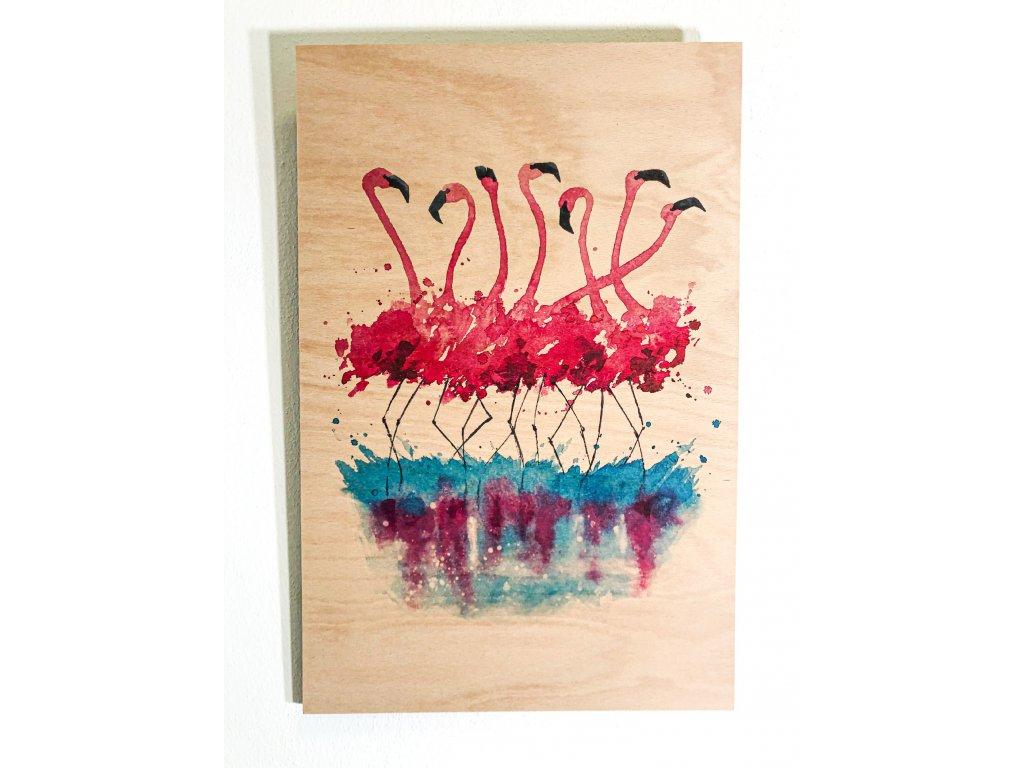 Obraz na dřevě - Flamingos