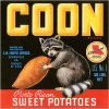 800 50x50cm Vintage produce posters advertising coon