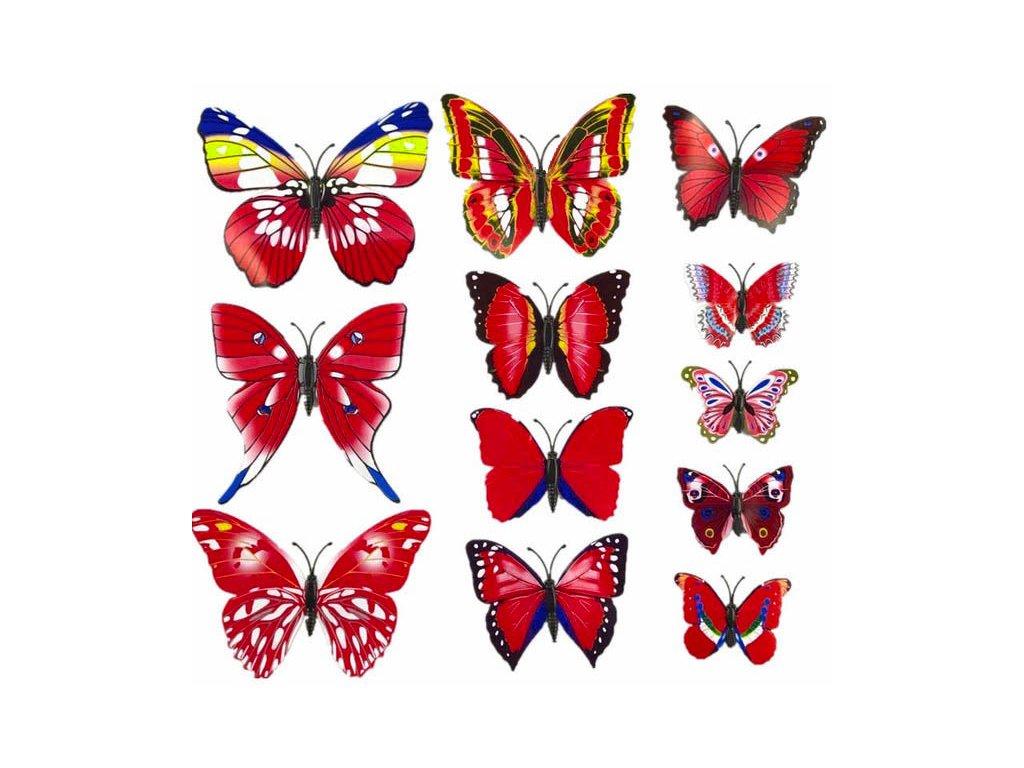 3D motýlci dekorace