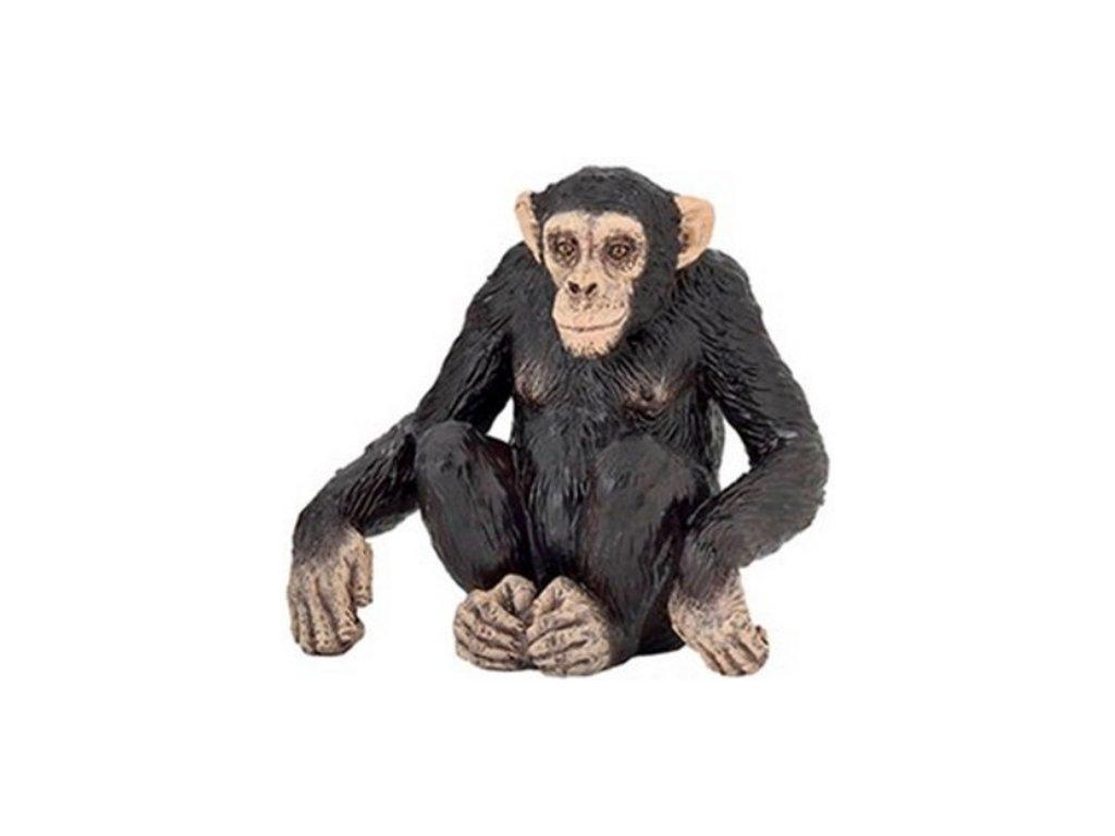 Papo Šimpanz