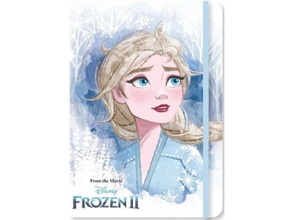 Sešit A5 Frozen 2