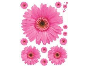Samolepka na zeď květiny sedmikrásky