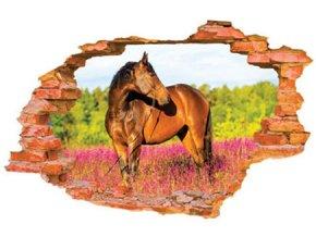 3D samolepka na zeď kůň