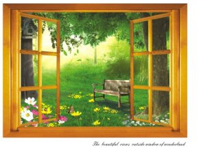 3D samolepka na zeď okno do zahrady