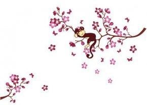 Samolepka na zeď Opička na stromě