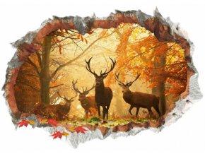 3D samolepka na zeď Podzimní les