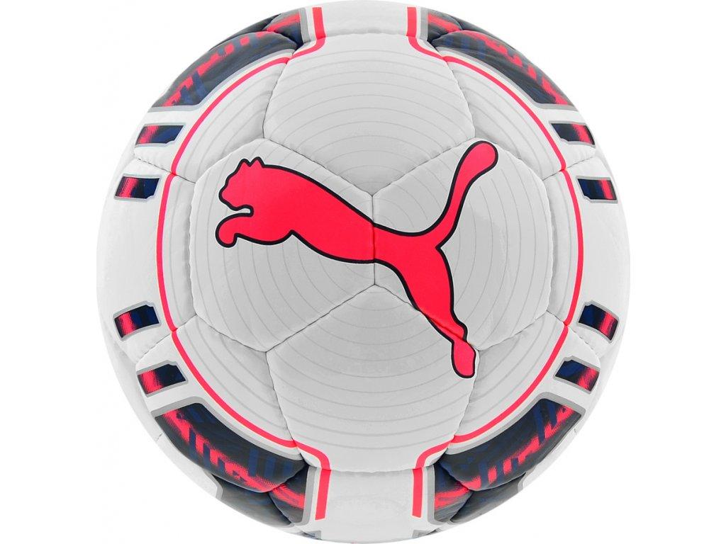 Futbalová lopta PUMA EVO POWER FUTSAL  82235 15