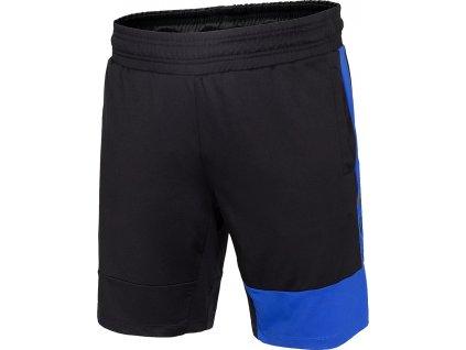 Pánske šortky 4F H4L20 SKMF013 20S