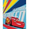 Dětská fleecová deka CARS 3 001, 120 x 150 cm