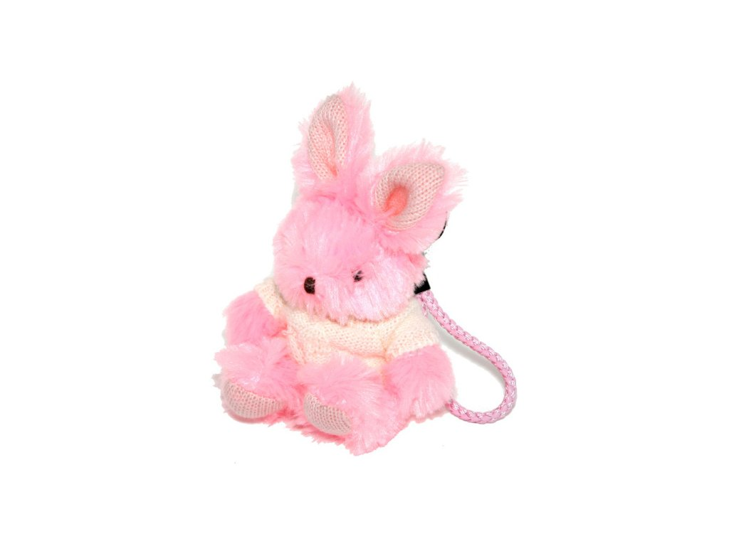 Ladybro rabbit 02
