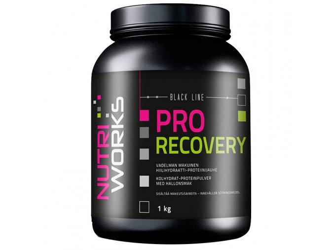 Nutri Works Pro Recovery 1000g + Vitamin C 200g AKCE  + šťavnatá tyčinka ZDARMA