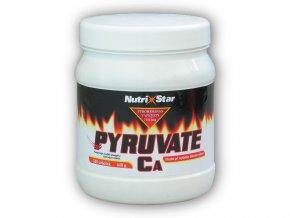 Nutristar Pyruvate Ca 500 kapslí  + šťavnatá tyčinka ZDARMA