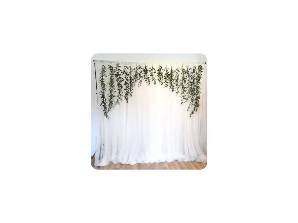 fotokoutek s bílým pozadím a dekorační zeleníí
