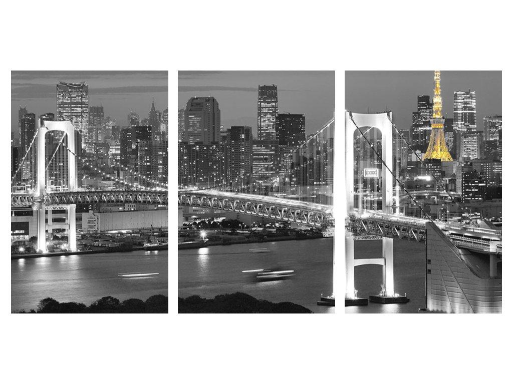 Obraz třídílný 100 x 50 cm most