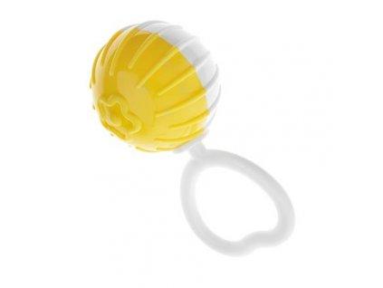 Štěrkotka - žlutá