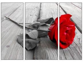 Obraz třídílný 70 x 50 cm červená růže 58