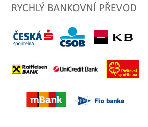 Rychlé bankovní převody